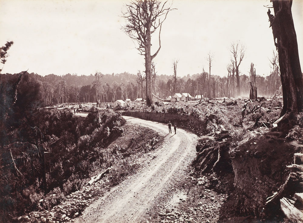 Black and white photo of a road with lots of felled trees