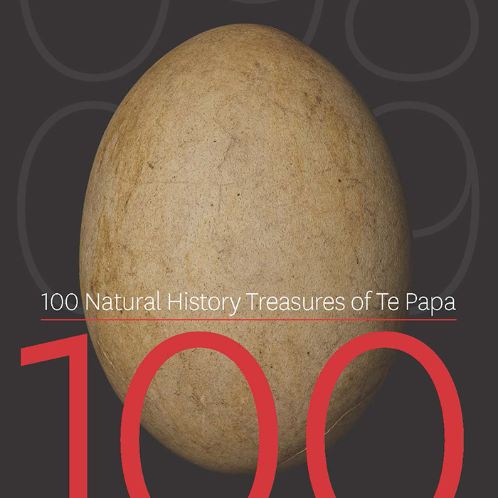 100 Natural History Treasures of Te Papa_Susan Waugh