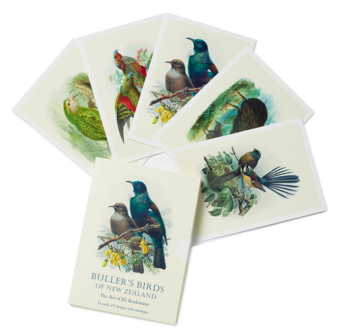 Buller's Birds of New Zealand notecards