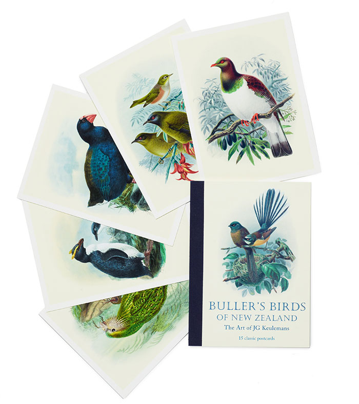 Buller's Birds of New Zealand postcards
