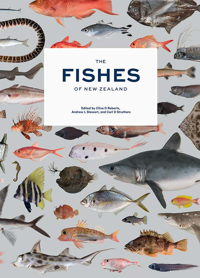 Fishes of New Zealand cover