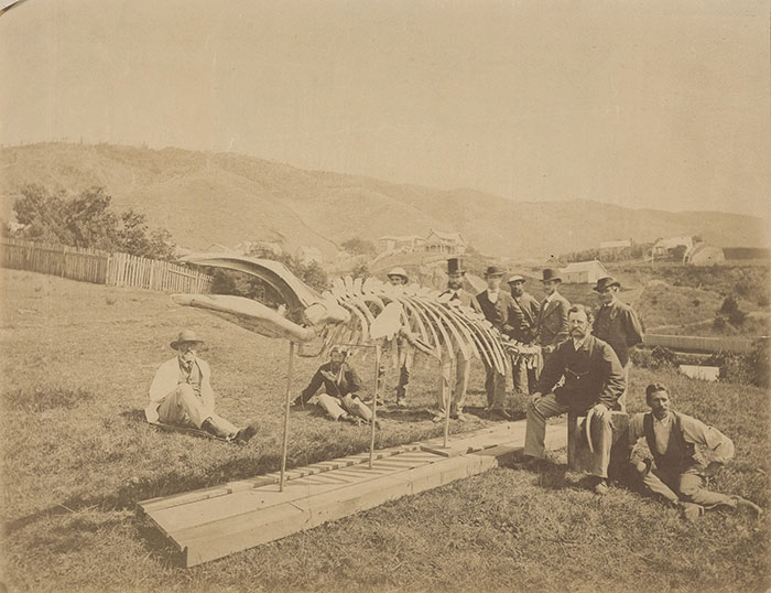 Historic photograph of group with skeleton