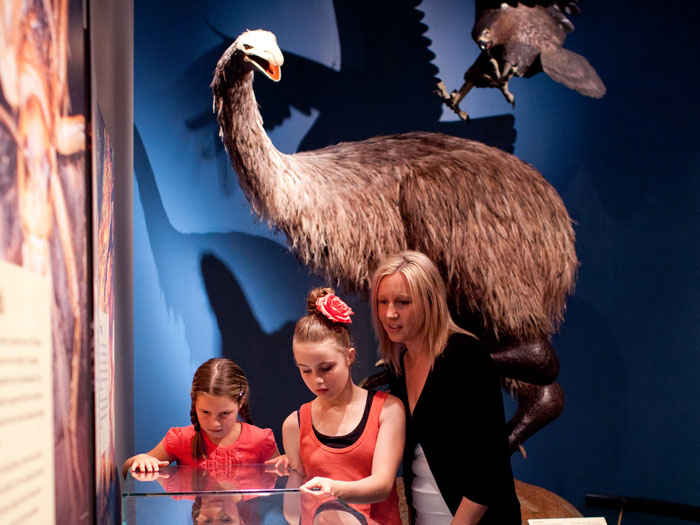 Visitors exploring Awesome Forces, 2011. Photograph by Norman Heke. Te Papa