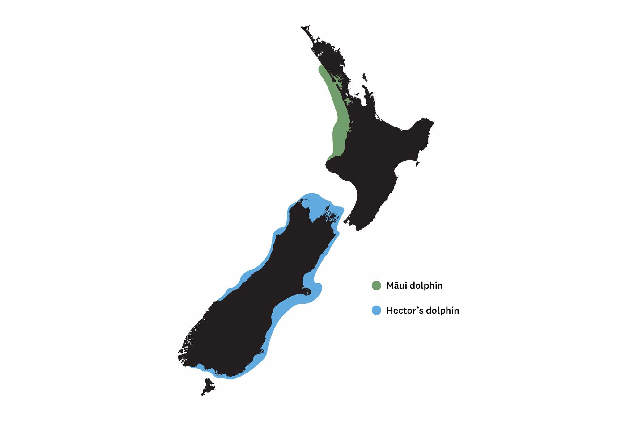 Illustration of New Zealand with the North Island outlined in green and the South Island outlined in blue.