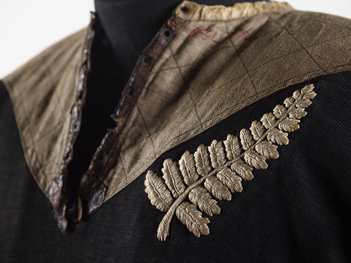The Significance Of The Silver Fern Te Papa