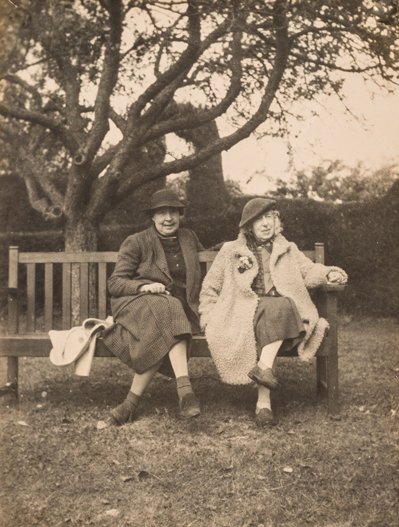 Two women sitting on a park bench under a tree