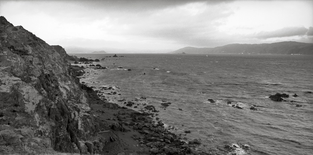 Black and white photograph of Somes Island and Ward Island