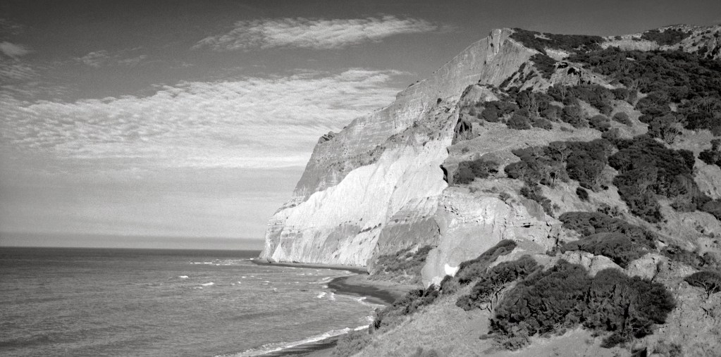 Black and white photograph of Wairau Valley, Marlborough