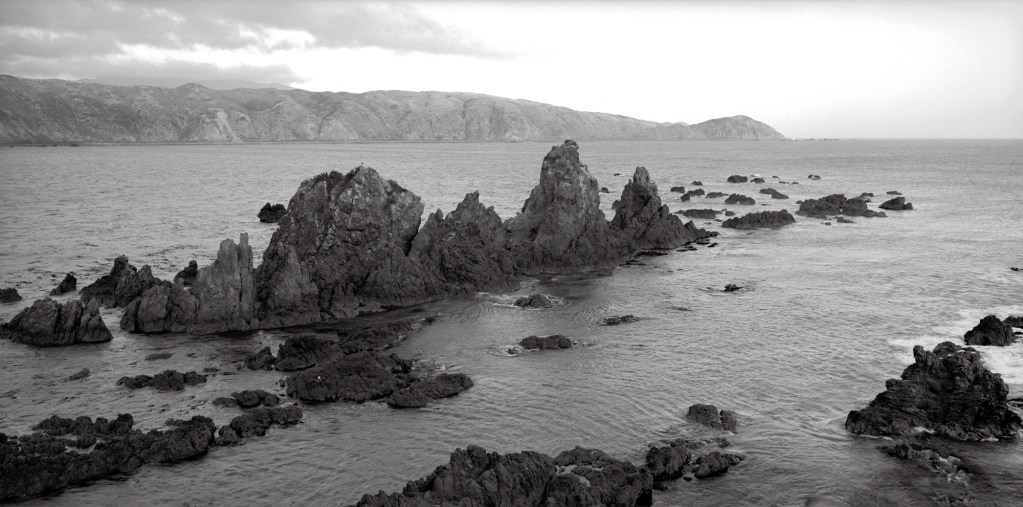 Black and white photograph of Wellington Harbour