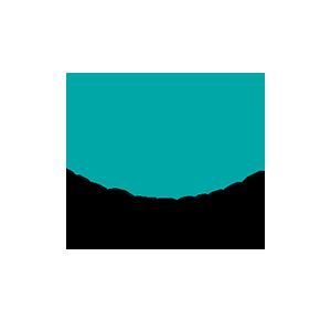 Ngā Taonga Sound Vision logo 300x300