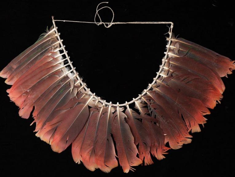 Gorget, Papua New Guinea, maker unknown. Gift of Mr J D Hutchin, 1948. Te Papa (FE003783)