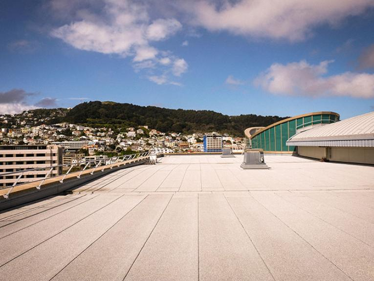 Te Papa's rooftop, a largely flat space with Mt Victoria in the distance
