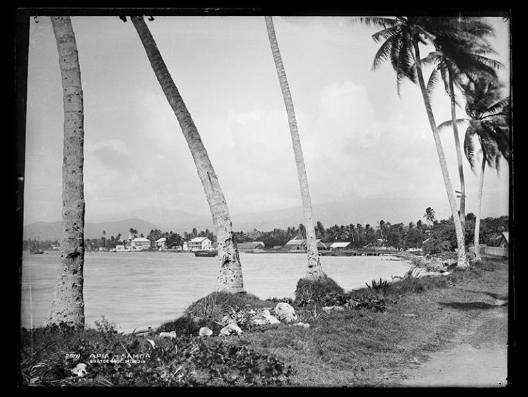 A black and white photo of a Pacific island beach with palm trees