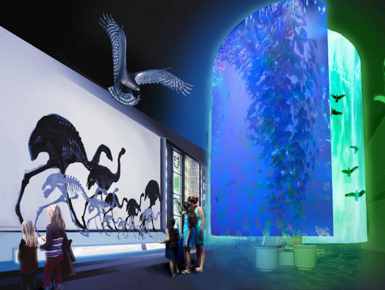 Artist's impression of Te Papa's new natural environment exhibition, 2017. Te Papa