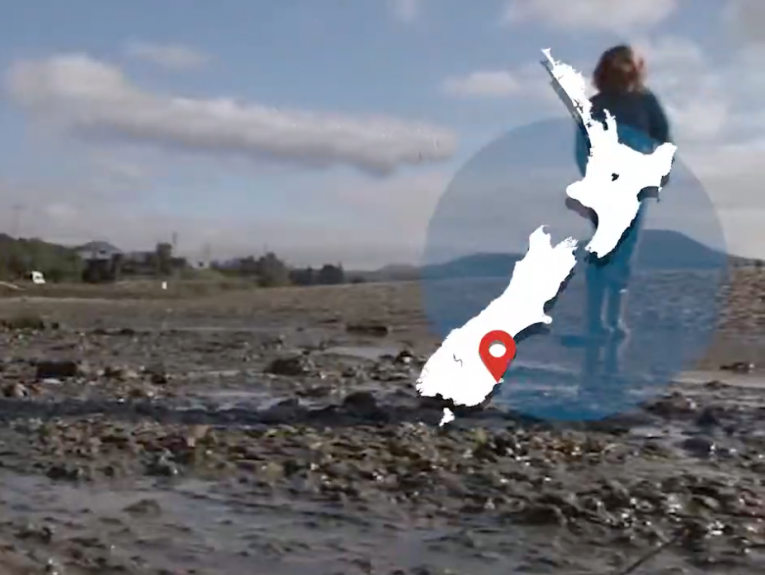 A photo of a beach with a map of New Zealand overlayed on it