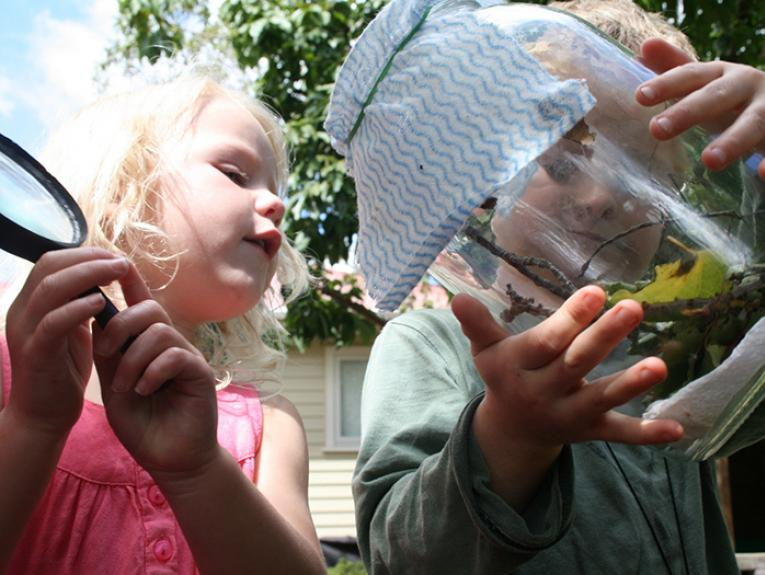 Young children look at insects in a jar