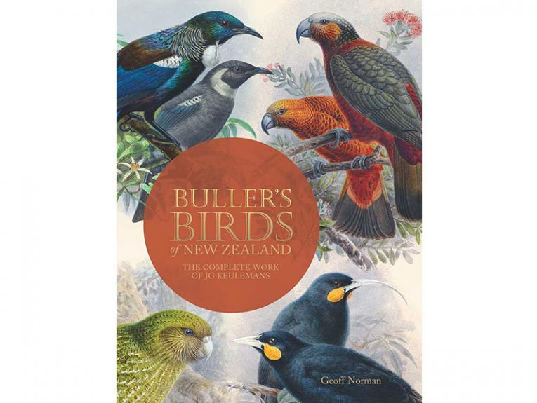 cover of a book about birds of New Zealand