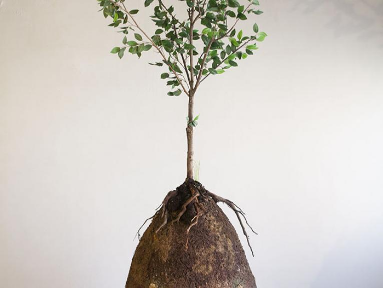 An egg shaped container covered in dirt, with a tree growing out of it