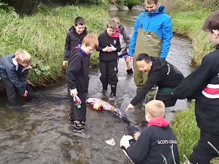 Kids and one adult standing in a stream setting up a barrier to catch plastic