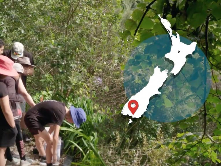 Children bending over a bucket in the bush, there's a map of New Zealand overlaid in the top right-hand corner