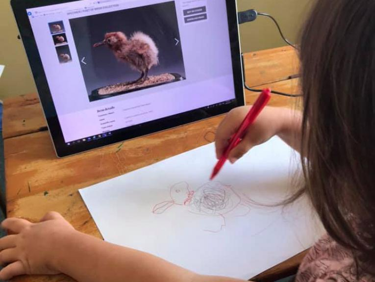 A small child draw a bird copied from a picture on a computer