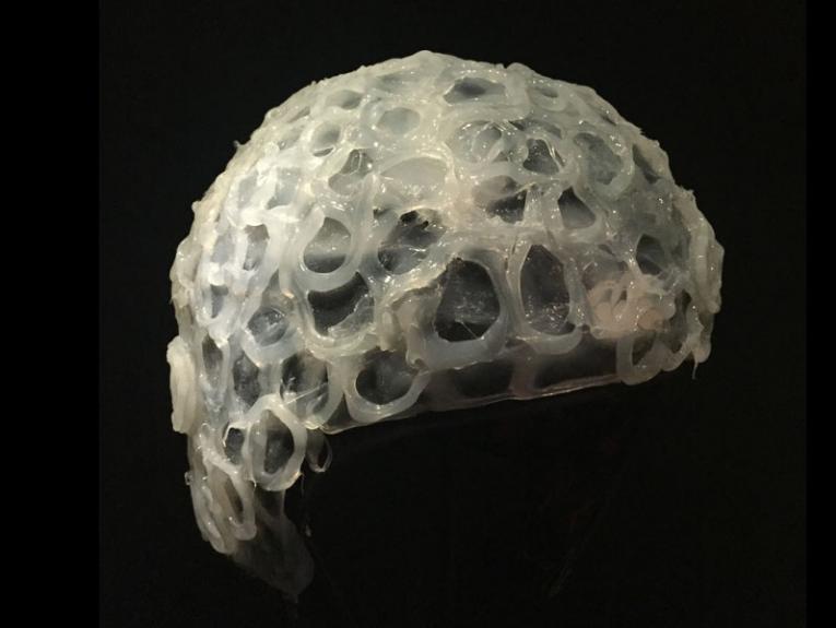 kakapo ejaculation helmet