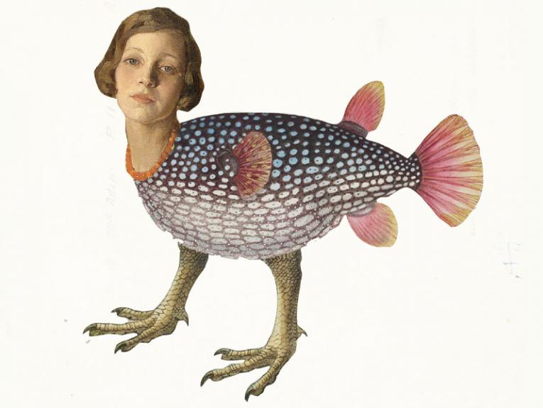 An image made up of three separate images, of a fish body with bird legs and a woman's head