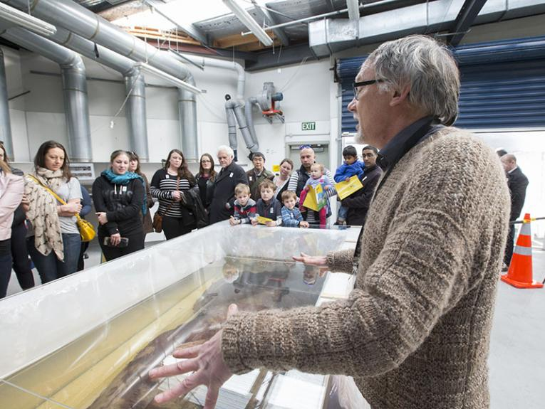 Visitors look at the colossal squid in Te Papa's fish research facility