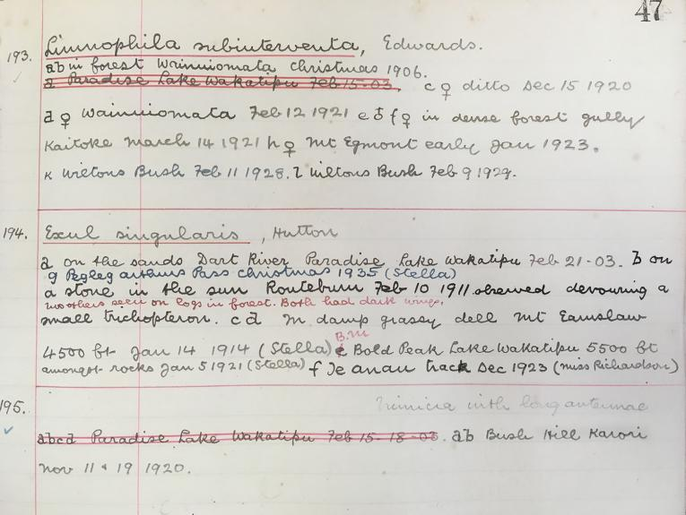A photocopied page of handwriting in red and black ink