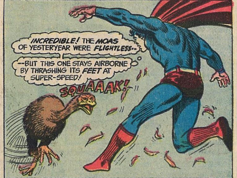 Superman and a moa flying in the air