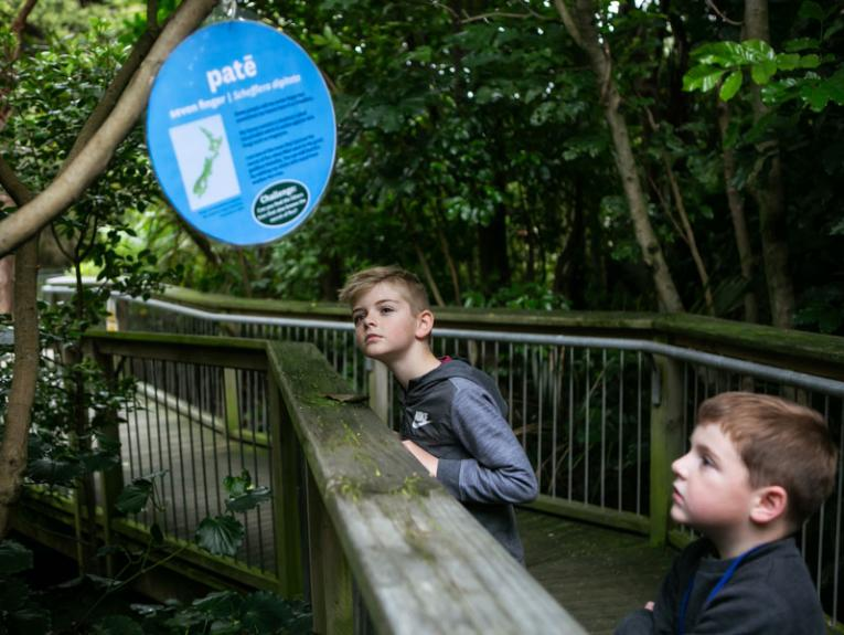 Children exploring the outdoors