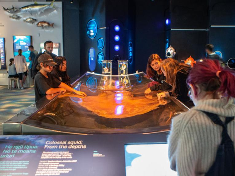 The colossal squid on display with children looking into the tank