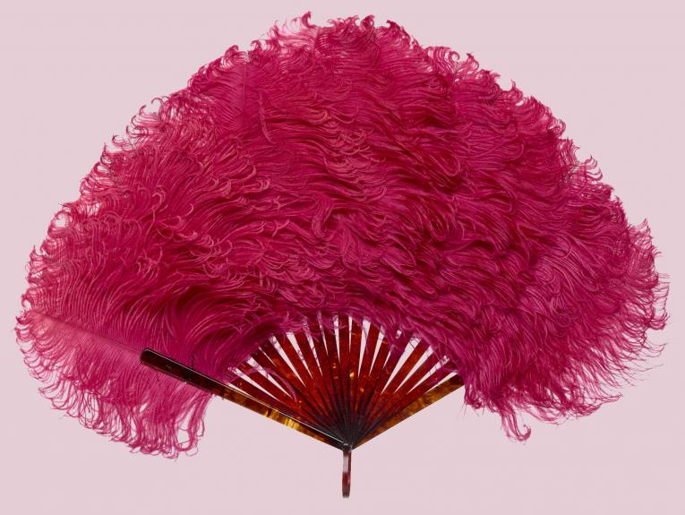 A hot pink feather fan on a light pink background