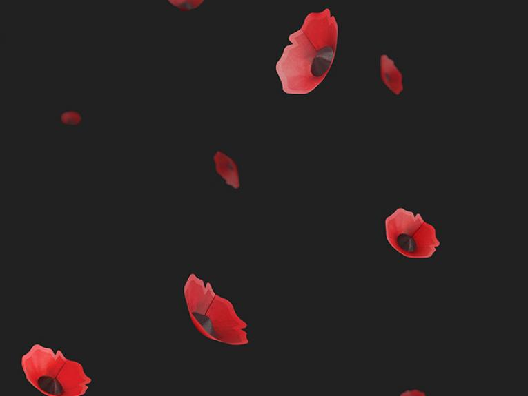 Graphic of falling paper poppies