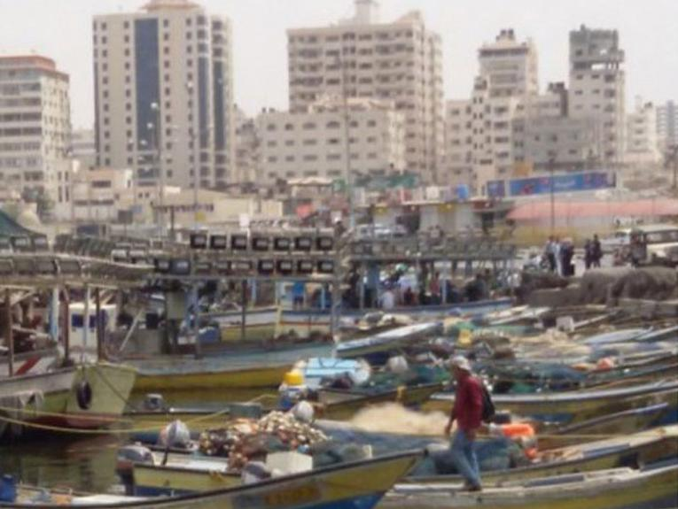 A crowded port with lots of little fishing boats, and residential apartments in the background