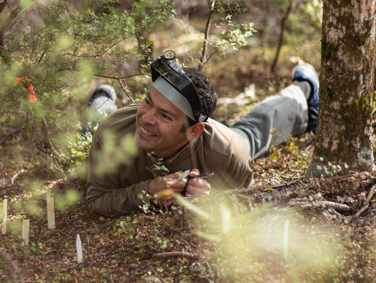 Carlos lies on the ground with his magnifying equipment on his head, surrounded by trees, with a big grin on his face