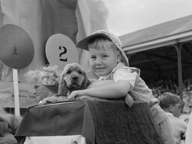 A young boy hugs a puppy at a fair