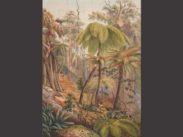 A complete jigsaw puzzle with a picture of tree ferns on it