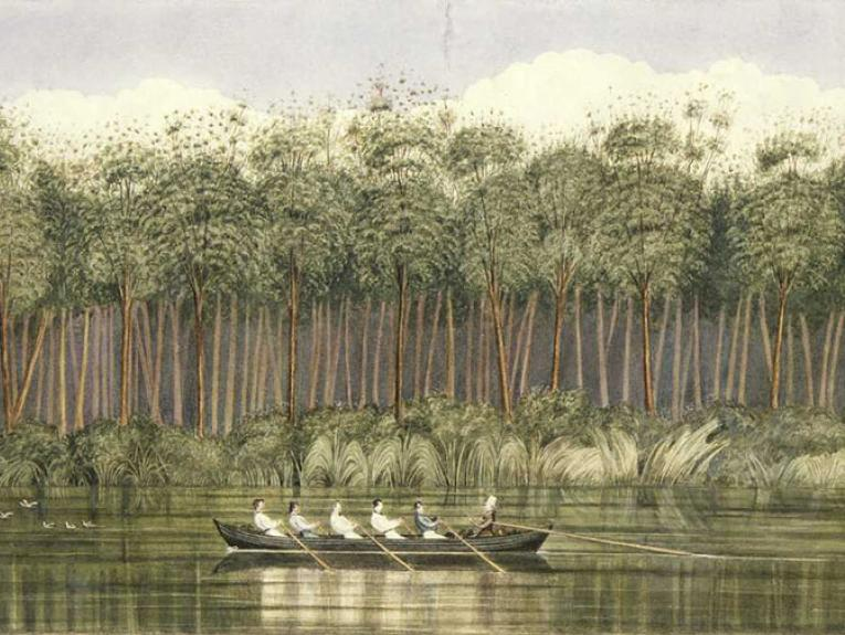 Shows a still dark green river with a virgin kauri forest, low scrub and flax on its far bank. In the centre of the view is a row-boat, with Colonel William Wakefield in top hat seated in the stern, trailing an oar. Five other men are rowing