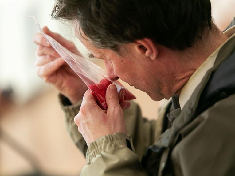 A man holds a small, clear plastic bag of bright red powder up to his nose, and smells it