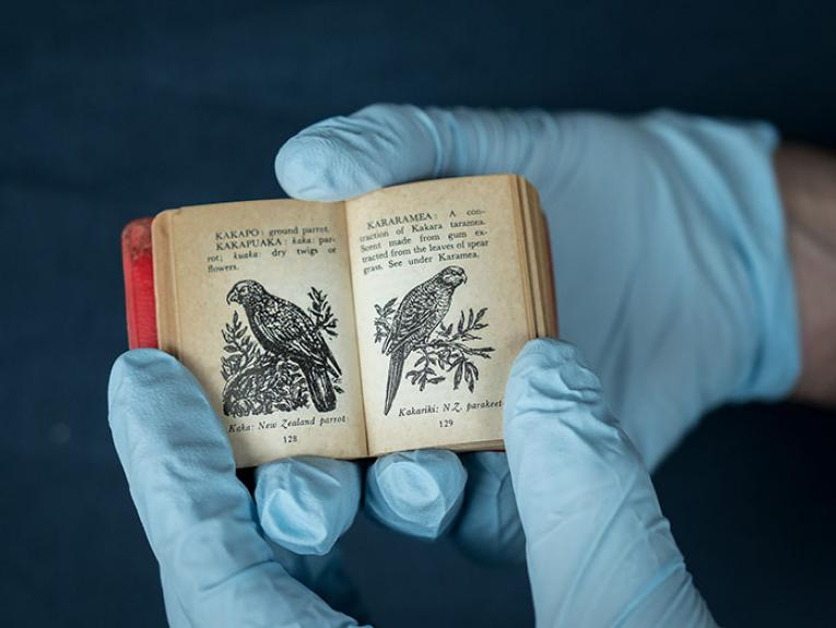 A tiny book with a illustrations of a Kea and a Kākāriki is held in the hands of someone wearing blue gloves