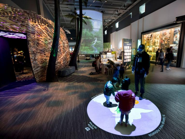 Inside the nature exhibition