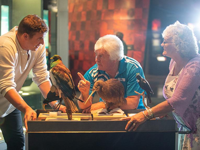 Two men and a woman looking at taxidermied birds. The man in the middle is pointing at the other man