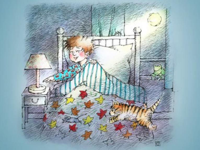 Illustration of a boy in bed. An orange cat jumps onto the bed. The moon shines through the window. A frog sits on the windowsill.
