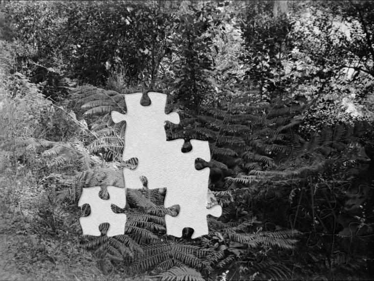 A black and white photo of a woman holding a white cat sitting in a tree fern with jigsaw pieces missing