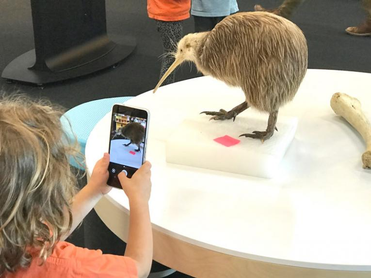 A child takes a photograph of a Kiwi