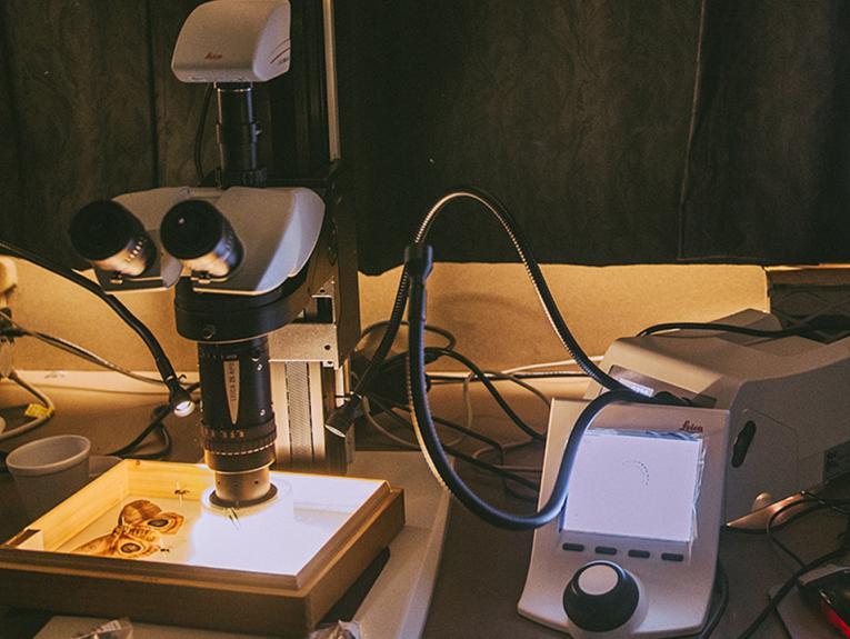 A photo of a macroscope in a dark room