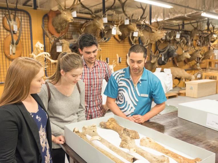 A tour group in the natural history storerooms