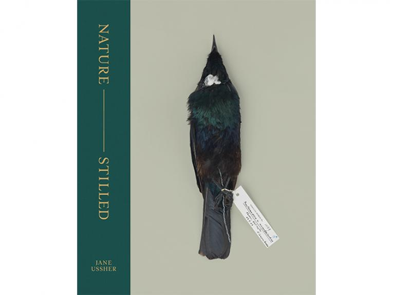 Nature — Stilled cover