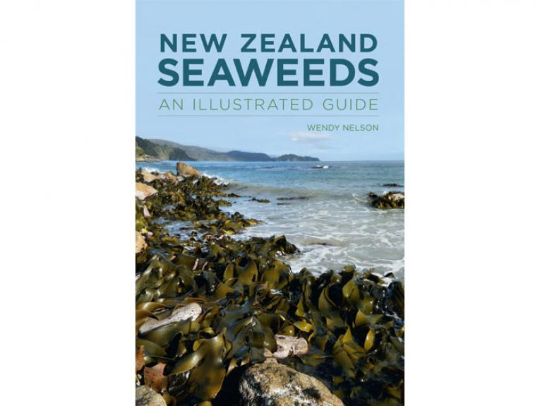 New Zealand Seaweeds: An Illustrated Guide